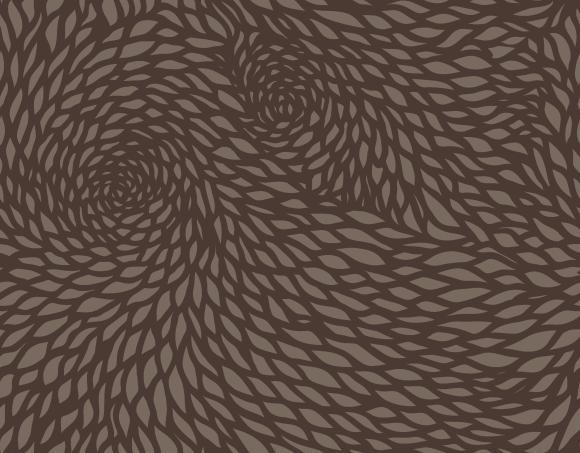 chrysanthemum  grey