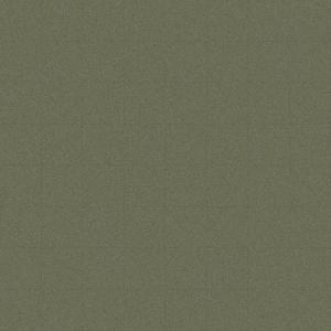 composite  light gren