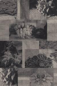 faded dahlia mono  grey