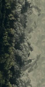 panorama  grey