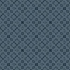 pip  light blue