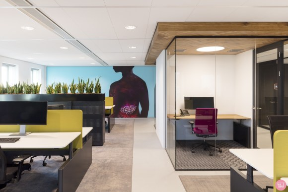 commercial area rugs, Commercial area rugs by Talk Carpet, the perfect interior accessory