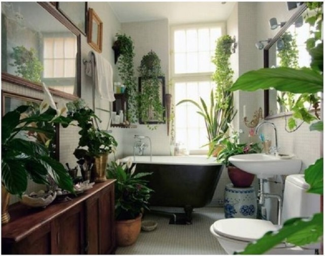 Bathroom With Garden