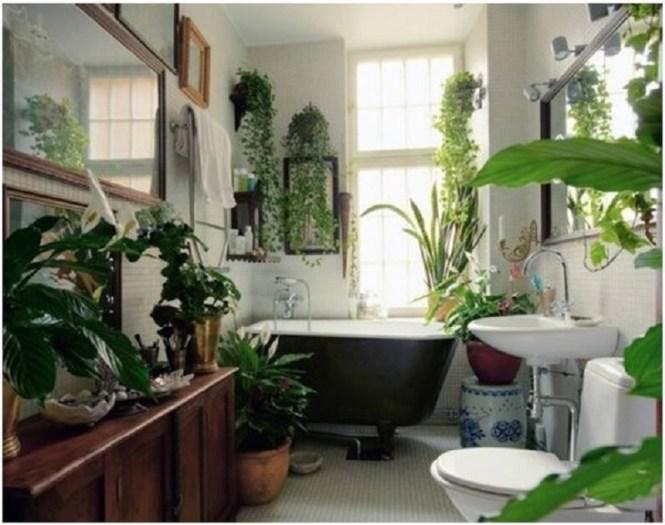 Bathroom With Garden