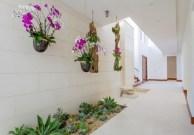 Hanging Flower Indoor Garden