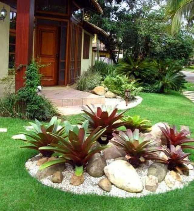 Add Big Ornamental Plants