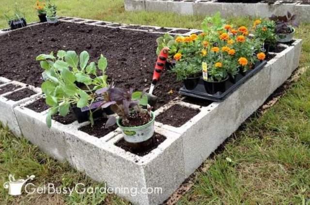 Concrete Blocks Raised Garden Bed