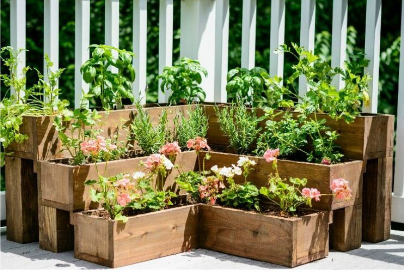Friendly Herb Garden