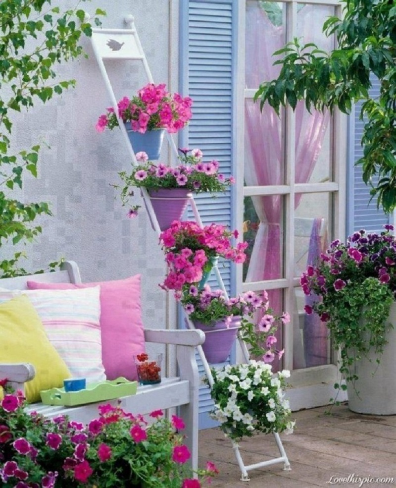 Terrace Flooded By Flowers