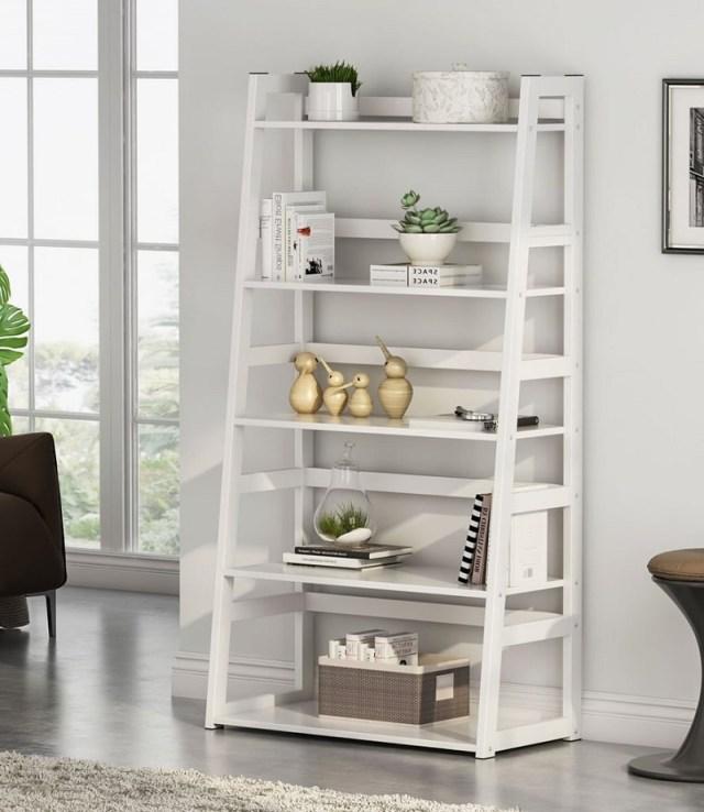 Tribesigns Bookshelf Modern Bookcase