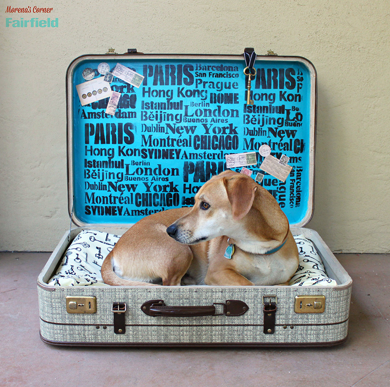 Turn A Suitcase Into A DIY Dog Bed
