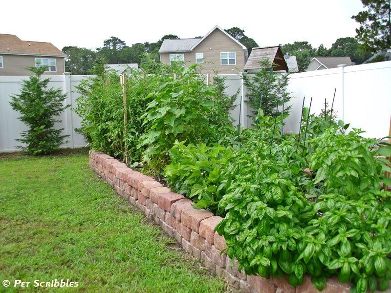 Vegetable Raised Garden Bed From Bricks