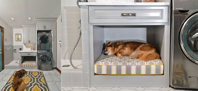 Spa Like Dog Wash In Your Laundry Room