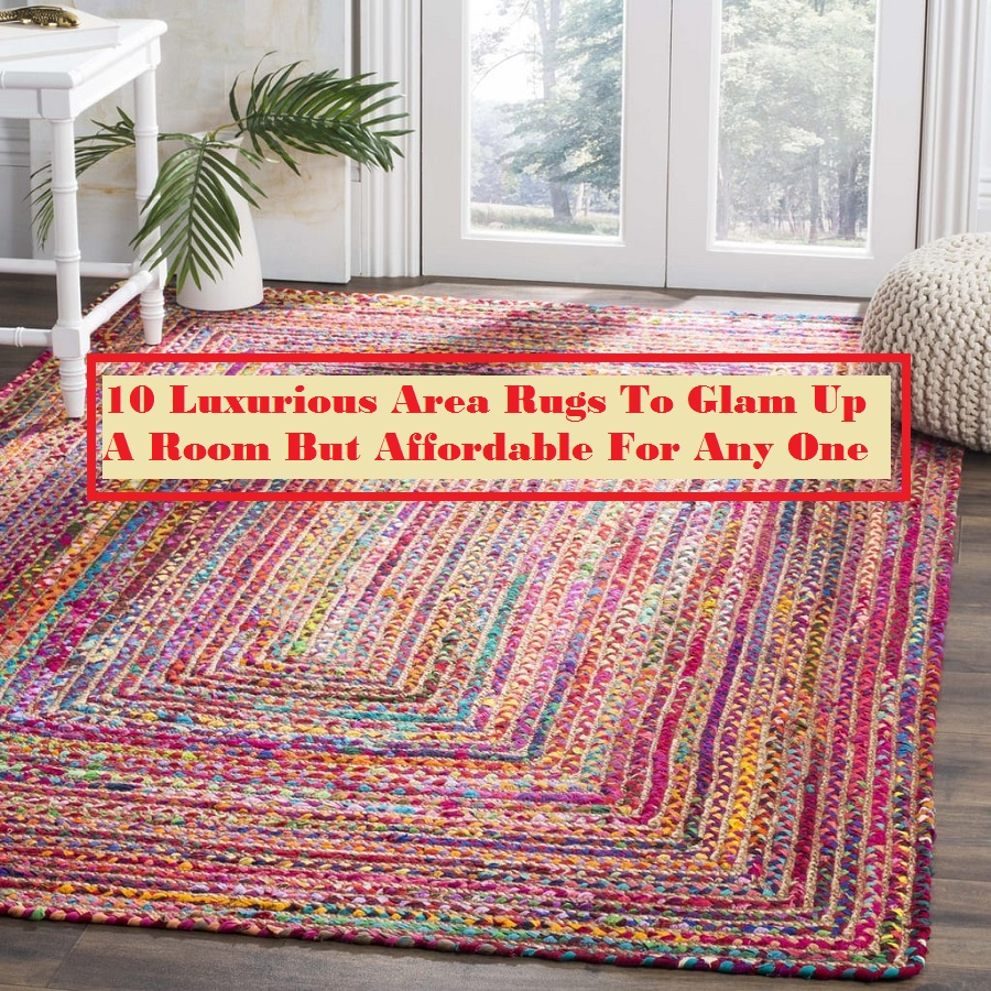 10 Luxurious Area Rugs To Glam Up A Room But Affordable For Any One