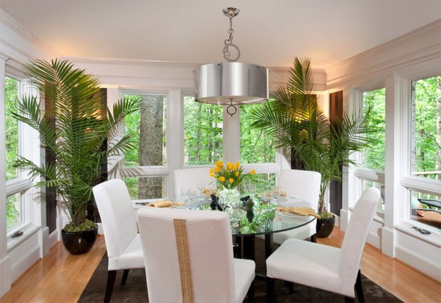 Display Plants As Centerpiece