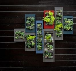 Old Window Shutter As Vertical Garden