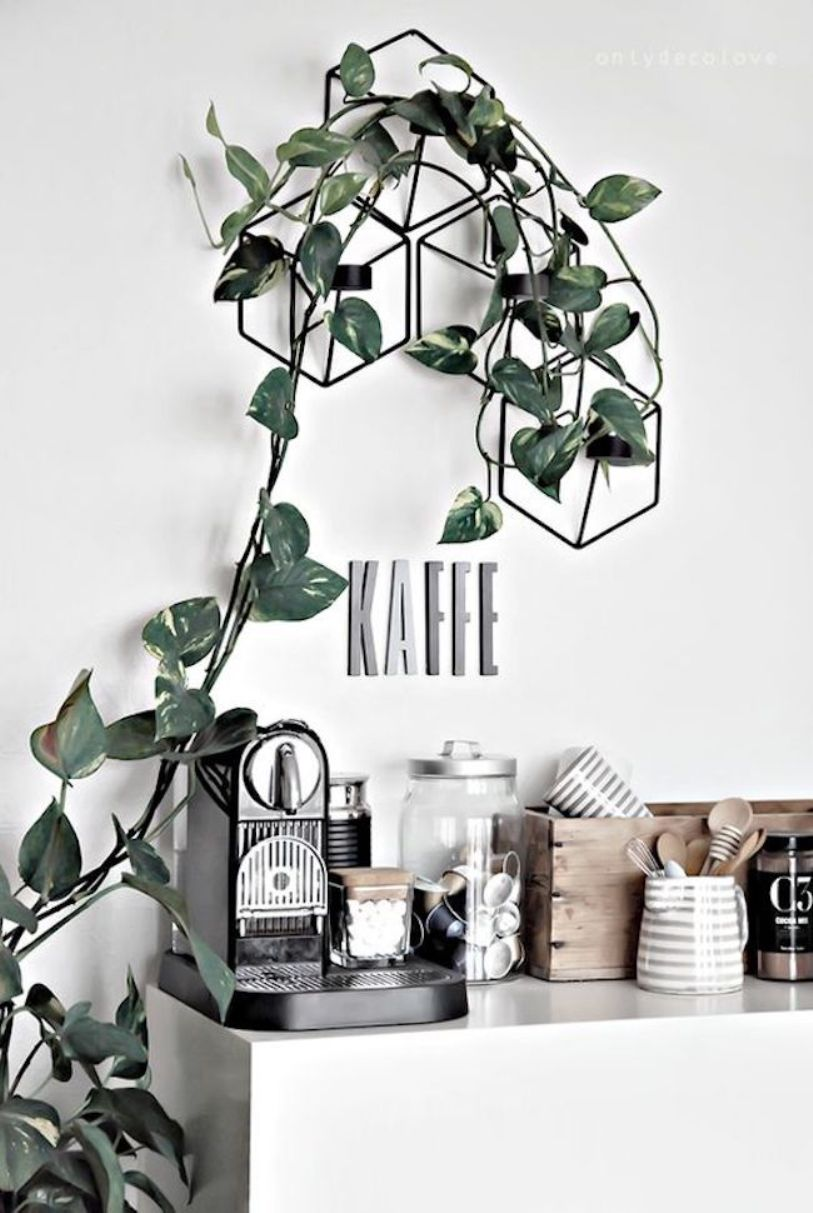 Scandinavian Coffee Bar