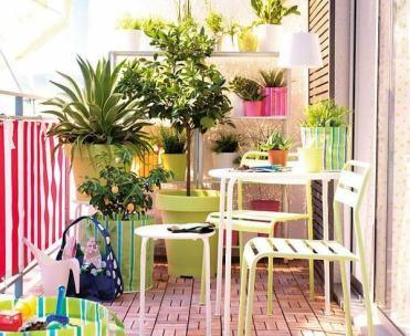Tips To Start A Balcony Flower Garden 9