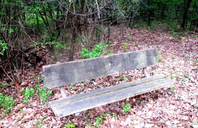 less well used bench