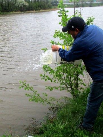 throwing back fish
