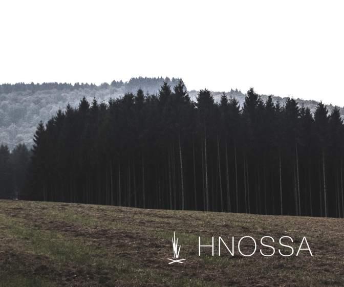 digital-ads_Hnossa Trees Bottom
