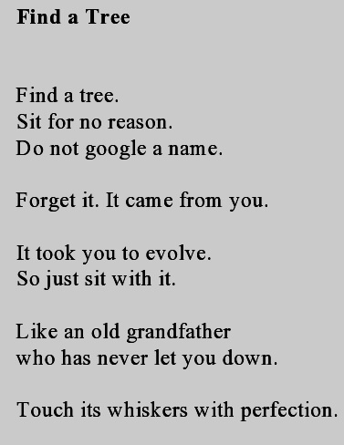 Find tree-page0001