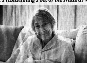 A Poem Written on the Day Mary Oliver Died