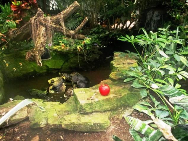 George's photos inspired me to visit Eden [Photo: David Kramer, 1/18/19]