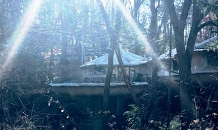 The Mushroom House: A Peek at Perinton's Crown Jewel
