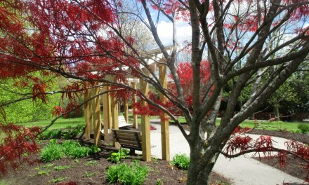 The Remember Garden in Highland Park refurbished and beautified in time for the Lilac Festival