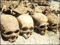 _44010612_skulls_203