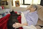 cat-therapy-teen-volunteers-1
