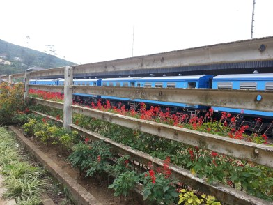 Nanu Oya Train Station - Only station to get to 'Nuwara Eliya'. 30 minutes from Nuwara Eliya by bus.