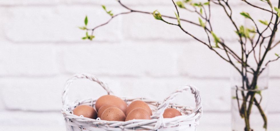 Why You Shouldn't Put all of Your Eggs in the Instagram Basket