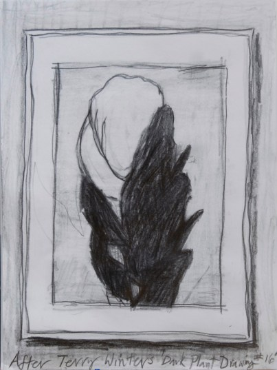 drawing-after-terry-winters-darkplantdrawing_16-01crop