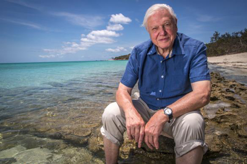 Quotes by David Attenborough that will make you love the natural world