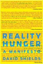 Reality Hunger book cover