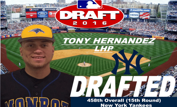 Monroe College Pitcher Tony Hernandez Selected by Yankees in 2016 MLB Draft