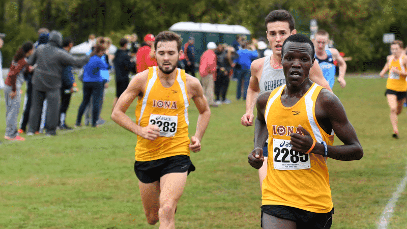 Iona XC Ranked No. 8 In USTFCCCA National Poll.png