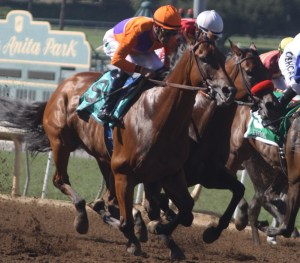 Beholder (on the outside) in the early stages of the Zenyatta Stakes at Santa Anita Park. Photo by Terri Keith.