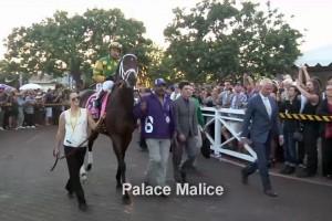 SA_BreedersCup_Palace Malice