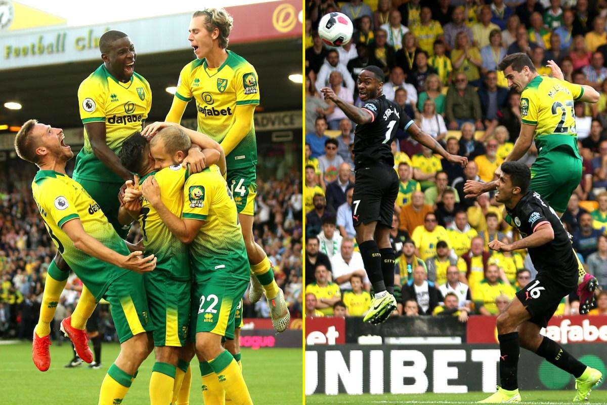 Teemu Pukki Strikes As Injury Stricken Norwich Claim