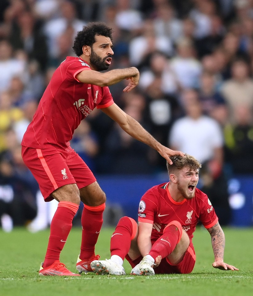 Elliott suffered a dislocated ankle and Liverpool star Mo Salah immediately demanded attention for the youngster