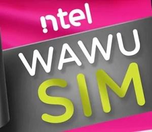 Ntel Wawu SIM 12GB for N1000 Data Offer