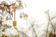 A safety blessing note hanging on a tree branch.