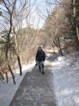 Getting icy as we trekked up the mountain.