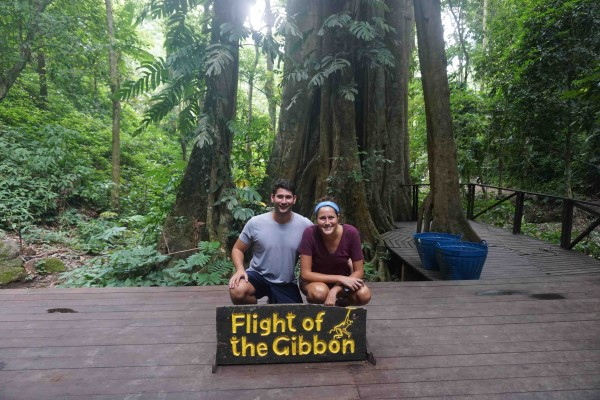 Flight of the Gibbons