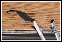 Fix Storm Damage, Roof Leaks and Mold in the Attic Fast