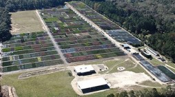 """Local Business, Perfect Plants Nursery, Makes """"Fastest Growing"""" List"""