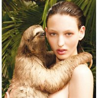 Sloths, Social Media and Sex Education